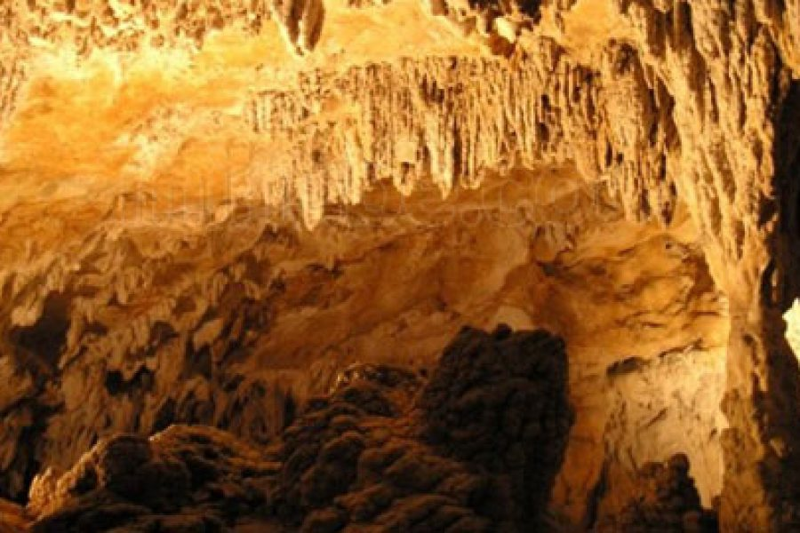 Alkerdi: el arte rupestre en Navarra