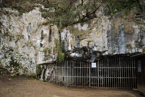 El Pindal: pionera del arte rupestre en Asturias