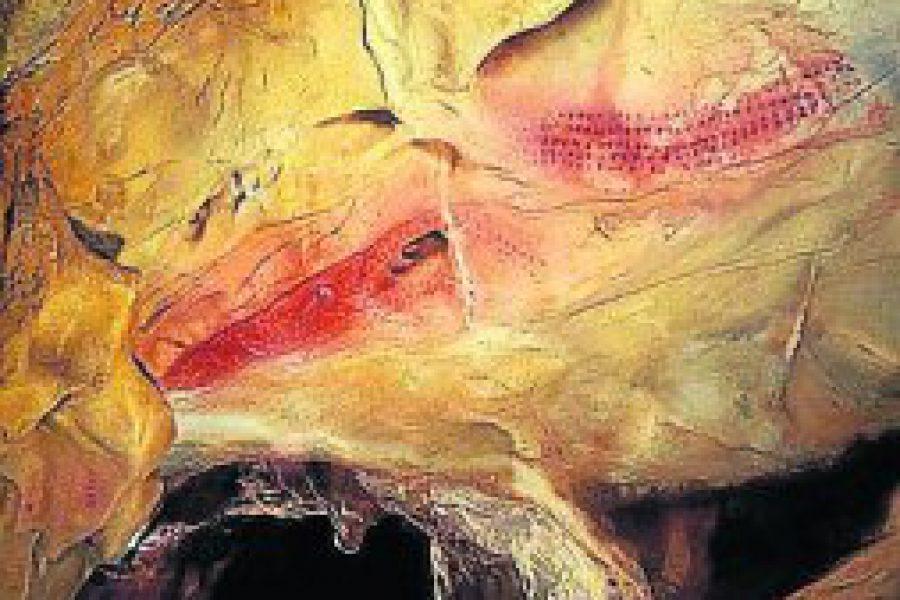 Chufín: un misterio rodeado por el agua
