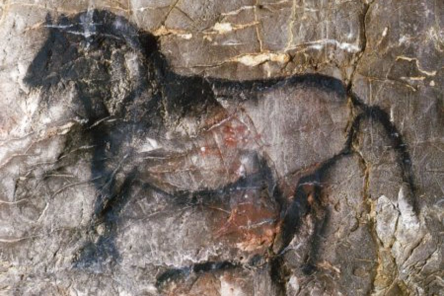 La Garma: arte rupestre intácto