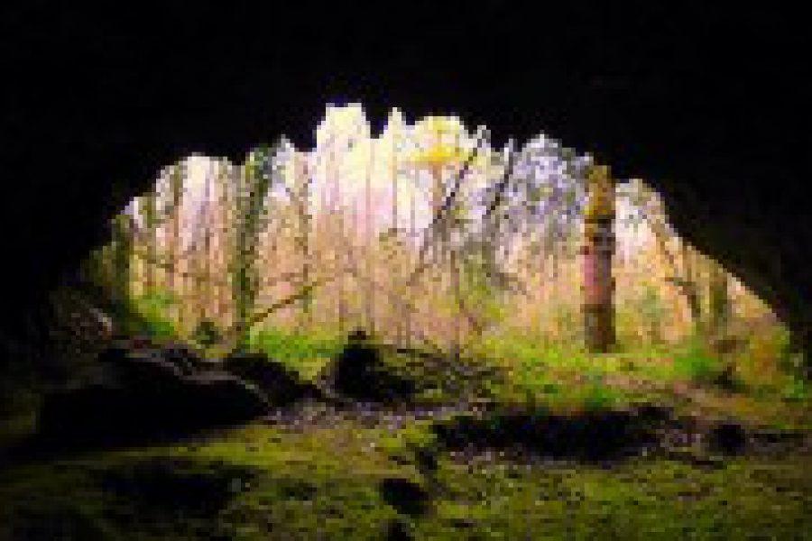 Las Herrerías: el santuario de los signos en forma de parrilla