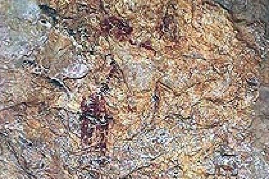 Baume de Bouchon o Baoumo de Boutchous: arte rupestre difícil de clasificar